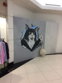 A playful cat in the mall attached