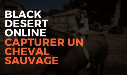 black desert online capturer un cheval sauvage, capturer cheval sauvage bdo, bdo france, black desert france, pearl abyss, misplay, tuto capturer un cheval savuage sur bdo