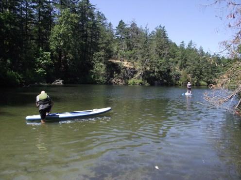 Thetis Lakes 2017