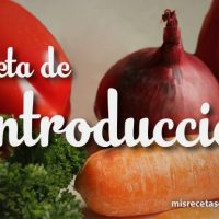 Dieta de Introducción