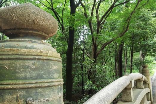 Brücke im Wald, der den Meiji-Schrein umgibt