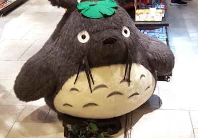 Totoro taucht öfter mal bei relativ zufälligen Shops aufauf