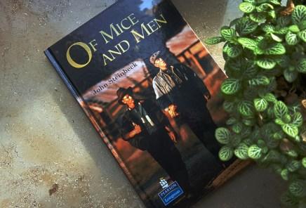 wir-lesen_mice-and-men_01