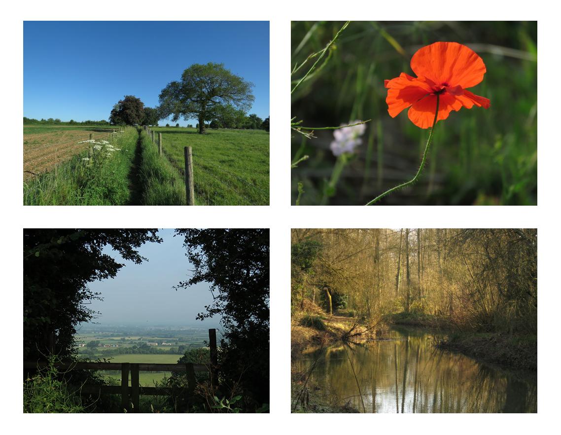 Photographs of the English landscape