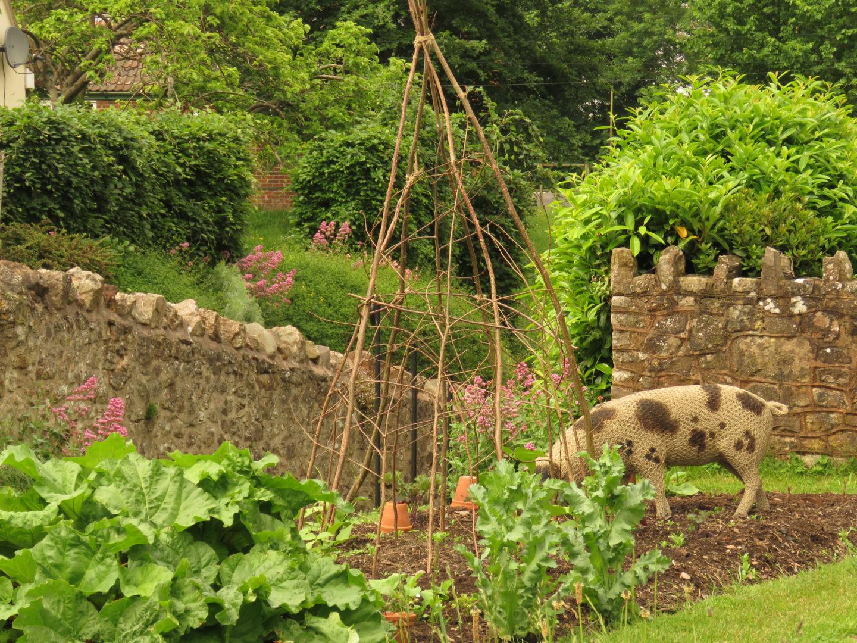 Garden at the National Trust Coleridge Cottage