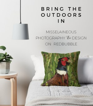 Pheasant Cushion on Redbubble