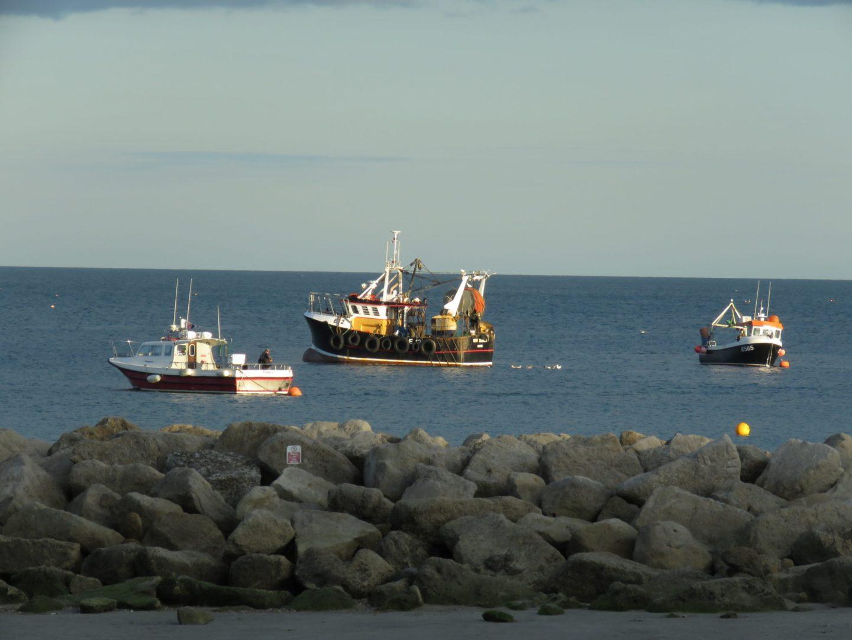 Fishing boats, Lyme Regis, Dorset, England