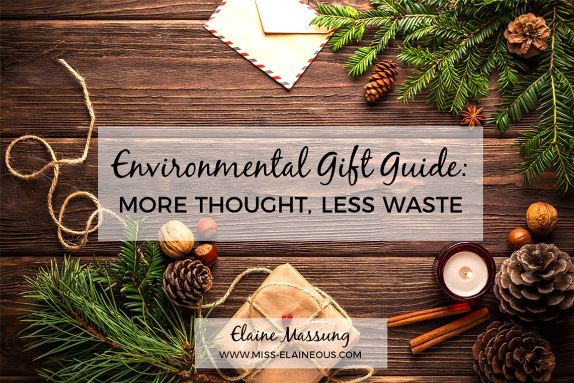Environmental Gift Guide: More Thought, Less Waste