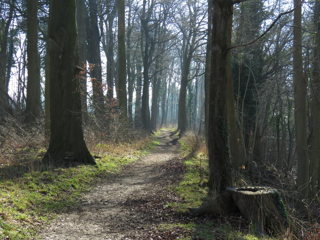 Walking trail near Castle Combe, Wiltshire