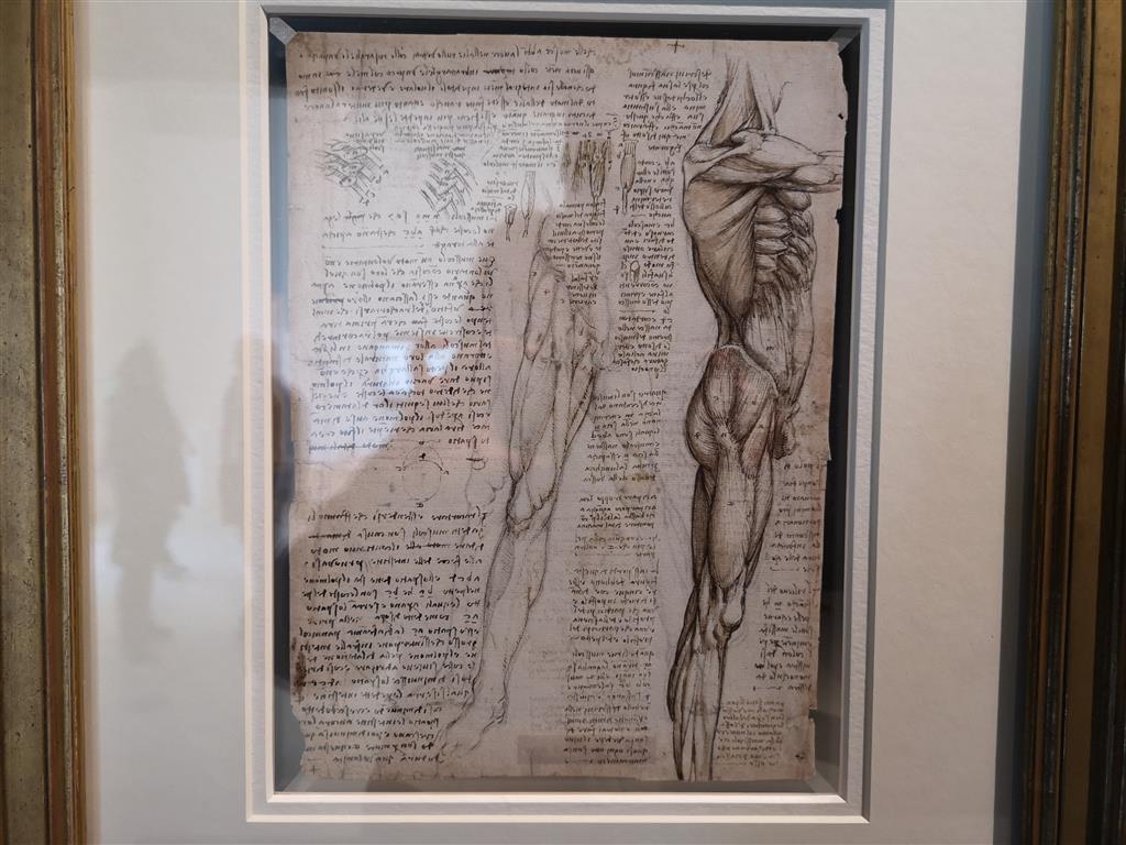 Da Vinci Exhibition, Millennium Gallery, UK