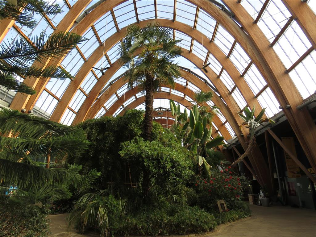 Sheffield Winter Garden, UK