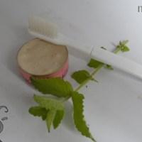 <!--:de-->Feste Zahnpasta mit Minze<!--:--><!--:fr-->Dentifrice solide à la menthe <!--:-->