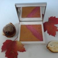 <!--:de-->Puder Herbsfarben: Grundpuder und Pressflüssigkeit<!--:--><!--:fr-->Poudre compacte couleurs d'automne: poudre de base et liquide de compactage<!--:-->