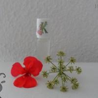 [:de]Roll on gegen Moskitos und Zecken[:fr]Roll-on contre les moustiques et les tiques[:]