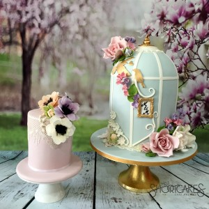 birdcage-watermarked-cake