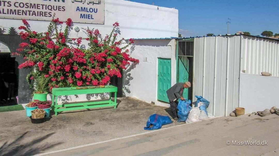 Afous Argan Oil Factory ligger ud til den lange lige vej mellem Marrakech og kystbyen Essaouira.