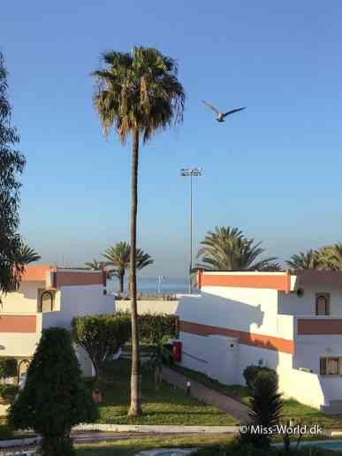 Almoggar Garden Beach Agadir