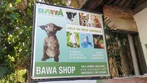 BAWA Shop in Ubud Bali - Bali Animal Welfare Association