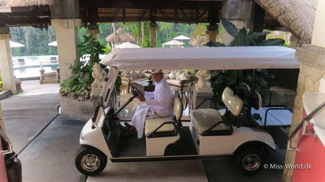 The butler Pancha is picking up guests and luggage in his extended golf car, at the luxurious 5 star hotel Viceroy Bali in Ubud