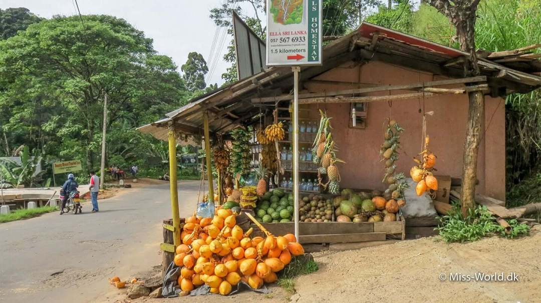 Ella Sri Lanka Shop with coconuts, pineapples and watermelons