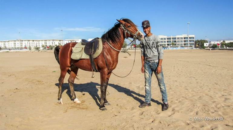 Essaouira beach - Ismail and his beautiful horse