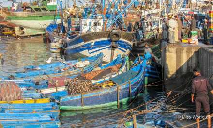 Morgentur i Essaouira havn, Marokko (Billeder)