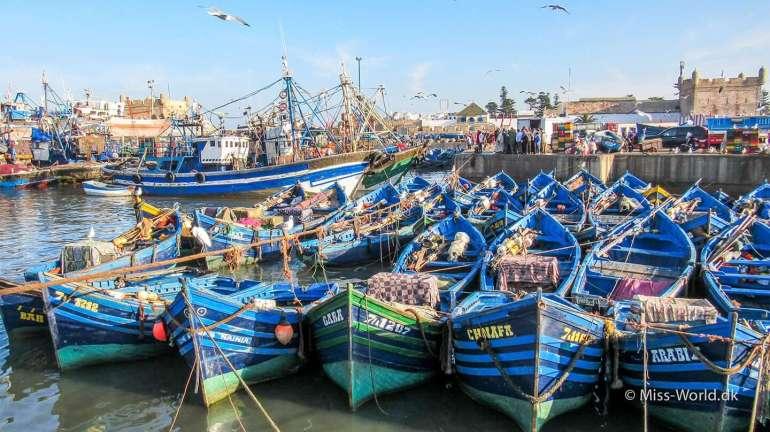 Essaouira Port Boats