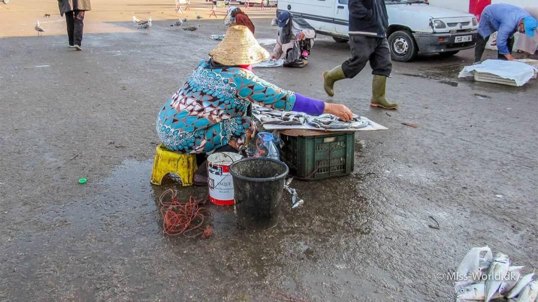 Essaouira Port Morocco - Lady selling fish