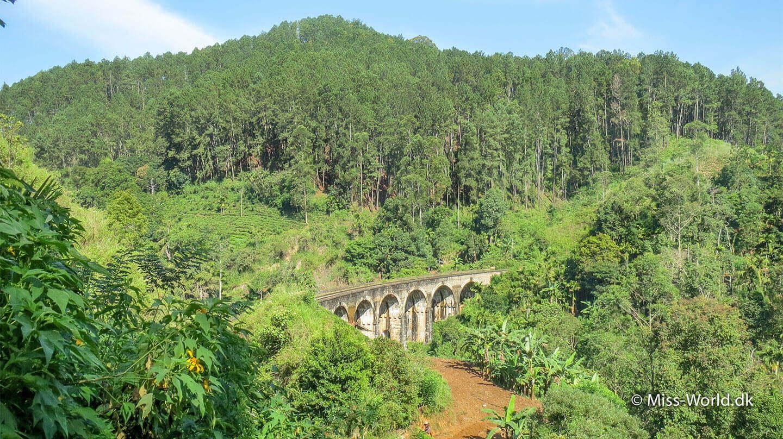 Nine Arch Bridge, Demodara, Sri Lanka