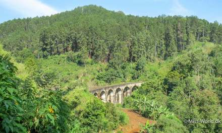 Nine Arch Bridge, Demodara, Sri Lanka