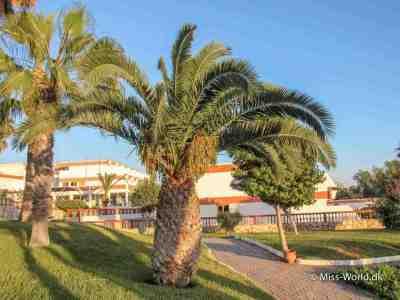 Palmer Agadir