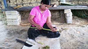 Madu Ganga River Sri Lanka - Cinnamon production, Lady in Cinnamon Island