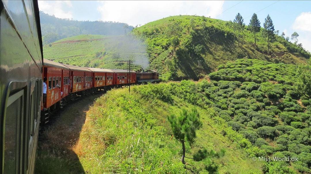 Ella-Colombo Train