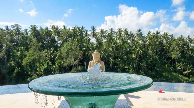 How about some private yoga lessons? Get in the right mood with this buddha and a small fountain - Viceroy Bali Hotel Ubud