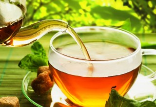 Thé vert bienfaits