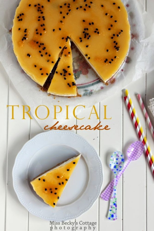 tropical cheesecake