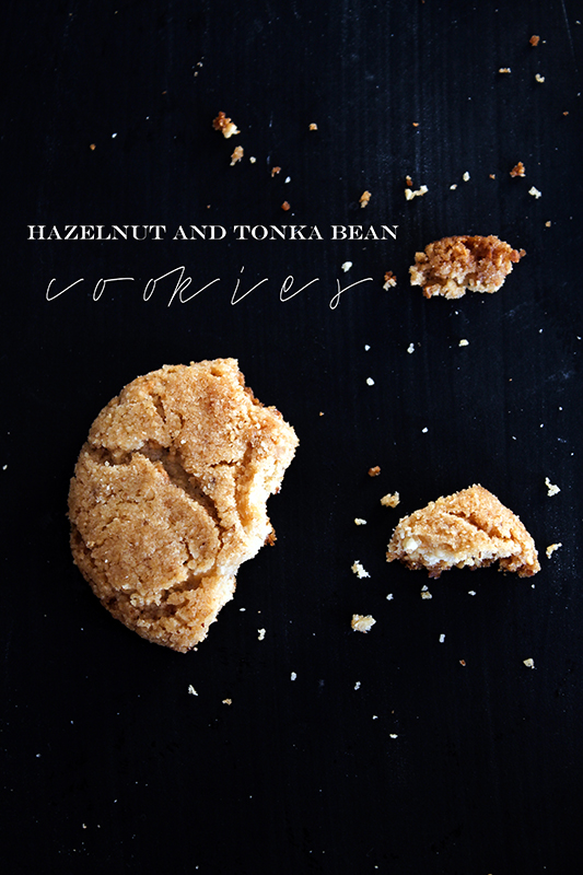 hazelnut tonka bean cookies
