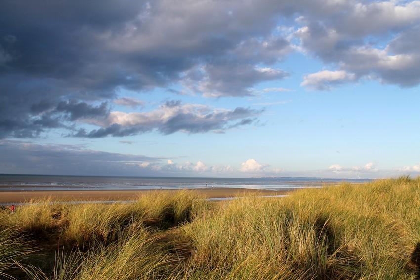 Entre les dunes 7