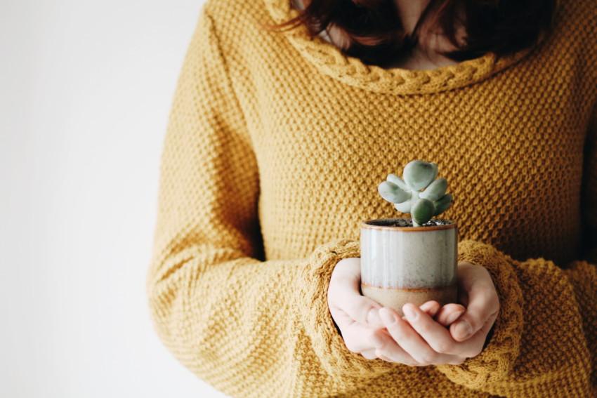Un cadeau - slow lifestyle - miss blemish