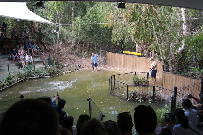 Australien Ostküste Roadtrip Reisen mit Kindern Cairns Port Douglas Küstenstraße Reiseblog Hartley'S Crocodile Adventure Tierpark Krokodilshow