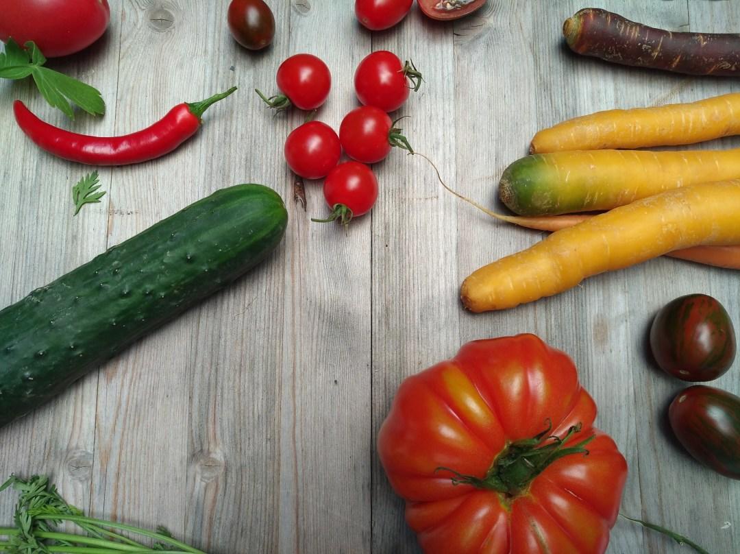Gemüsevielfalt tomaten, gurken, karotten
