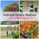 Outback Cattle Station: Beyond My Front Door