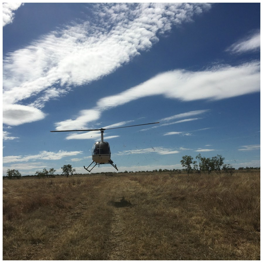Hiking chopper