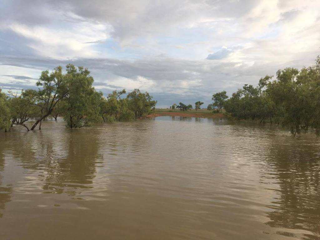 Outback Cattle Station: The Wet Season
