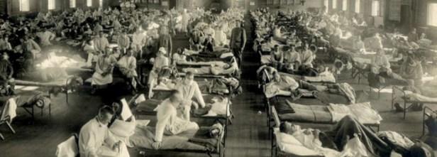 Virus et pandémies 4