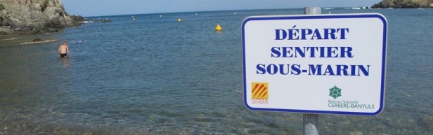 Site Plongée Méditerranée 01
