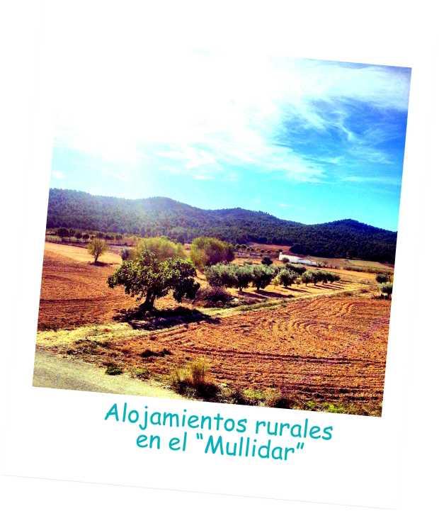 portada mullidar casas rurales