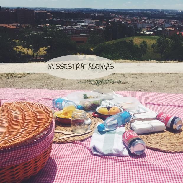 picnic-Madrid-missestatagem