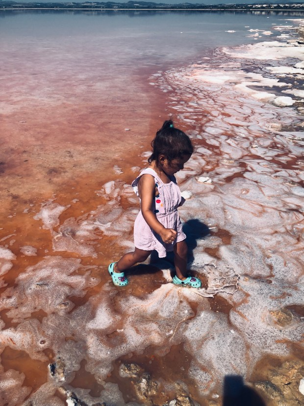 laguna rosa torrevieja (12)