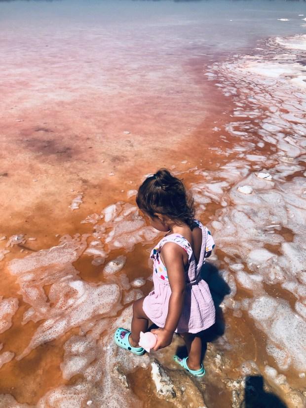 laguna rosa torrevieja (7)